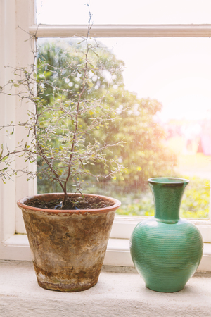window sill: Image of a rustic window sill with plant pot and vase.