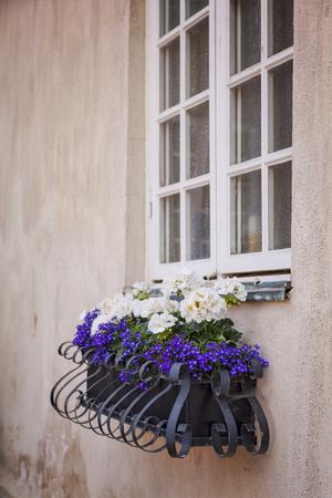 flower box: Image of an ornate metal window flower box.