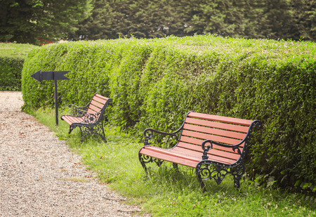 foot path: Image of park benches by a foot path. Stock Photo