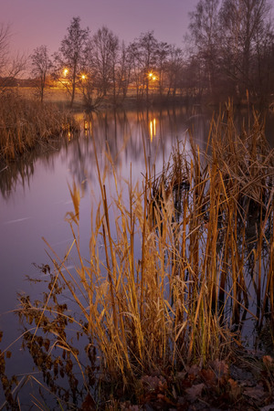 Foggy and dreamy evening landscape by pond. Helsingborg, Sweden.