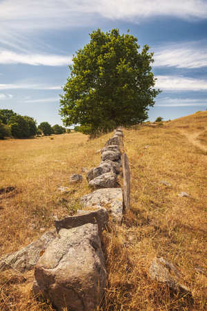Old stone wall in hilly rural landscape. Brosarp, south Sweden.