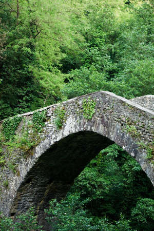 niches: Ancient Medieval bridge in Tuscany, Italy