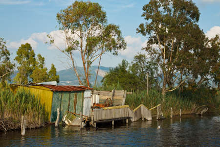 Hut for fishing in wetland behind someone eucalyptus tree  Stock Photo