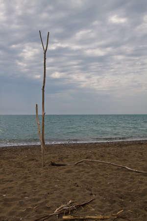 Cecina beach. Tuscany, Italy Stock Photo - 7860908