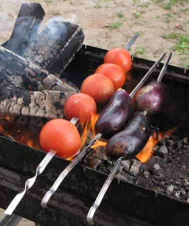 eggplant and tomato on skewer roasting on an open fire photo