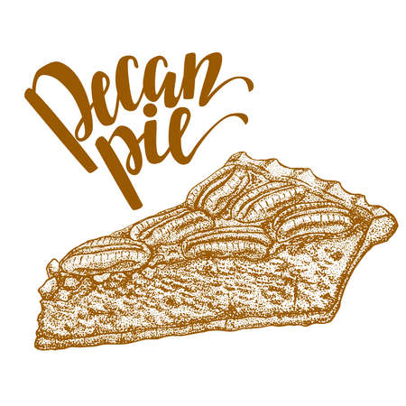 Hand drawn illustration of pecan pie Ilustrace