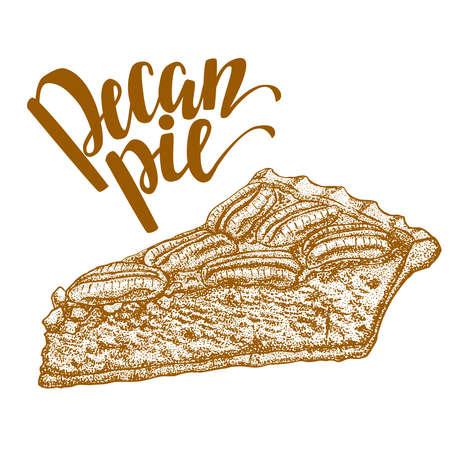 Hand drawn illustration of pecan pie Illustration