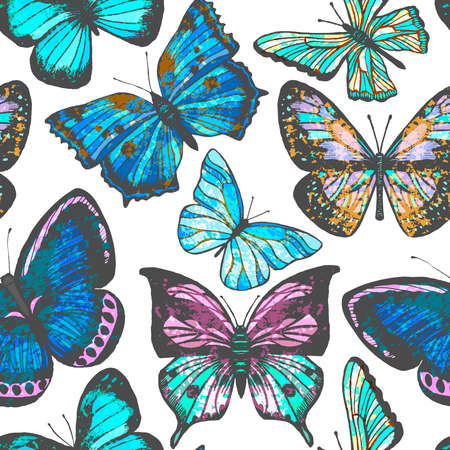 Vector seamless hand-drawn colorful background with butterflies Ilustrace