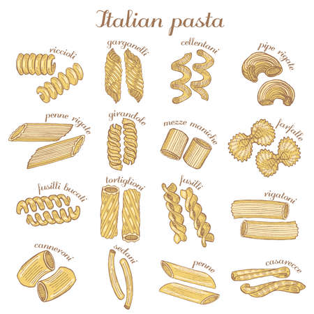 vector set of colored hand drawn different pasta shapes