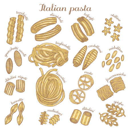 vector set of hand drawn different pasta shapes Çizim