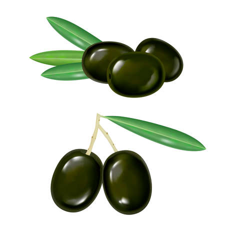 vector black realistic isolated olives on white background