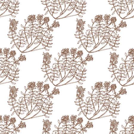 Wild thyme pattern.