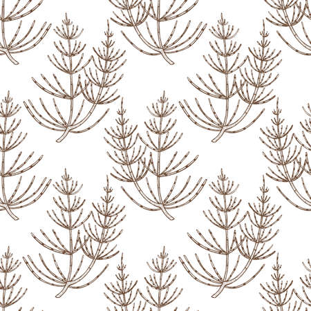Equisetum Pattern in Hand-Drawn Style
