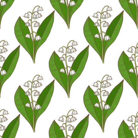 Colored Lily of the Valley Pattern. Hand Drawn Graphic Background for Surface Design. Vector Illustration of Medicinal Plant