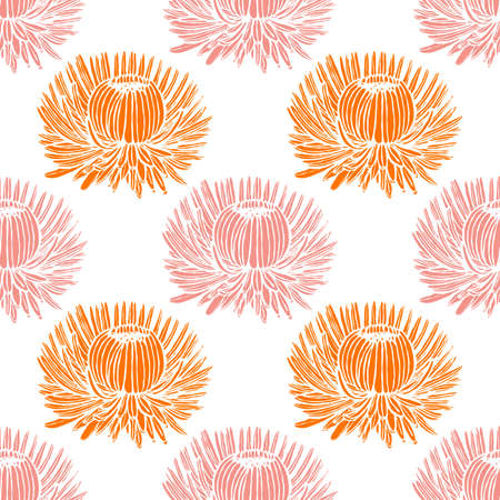 Chrysanthemum Pattern. Floral Background in Hand Drawn Style for Surface Design Prints Cards. Vector Illustration