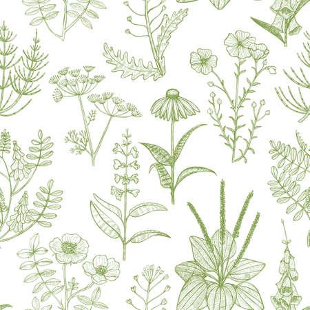 Lekki wzór z roślinami leczniczymi. Kwiatowy tło w stylu ręcznie rysowane na banery, ulotki, plakaty, projekt powierzchni kosmetycznych.