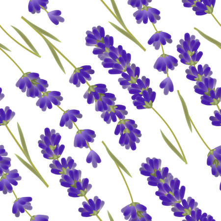 Lavender Pattern. Seamless Background in Realistic Style for Surface Design Cards Posters Fliers Banners. Vector Isolated Illustration