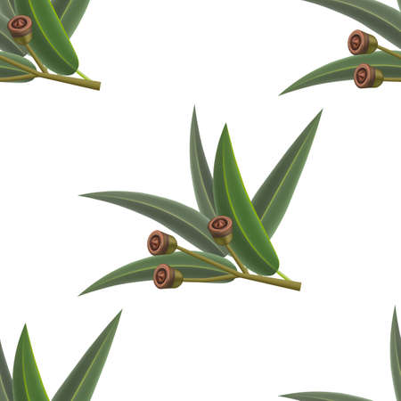 Eucalyptus Pattern. Seamless Background in Realistic Style for Poster Card Flier Banner Surface Design. Vector Isolated Illustration Çizim