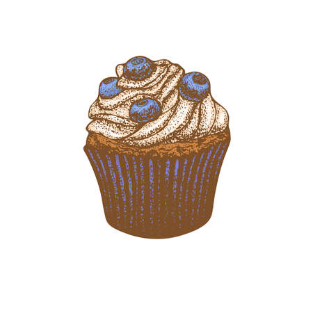 Colored Cupcake with Blueberry in Hand-Drawn Style
