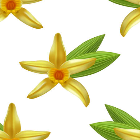 Pattern with Vanilla Flower and Leaves. Seamless Background in Realistic Style for Poster Card Flier Banner Surface Design. Vector Illustration