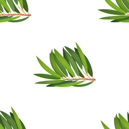 Tea Tree Pattern. Seamless Background in Realistic Style for Poster Card Flier Banner Surface Design. Vector Illustration