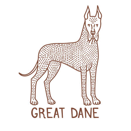 Isolated Great Dane in Hand Drawn Doodle Style