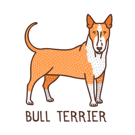 Isolated Bull Terrier in Hand Drawn Doodle Style