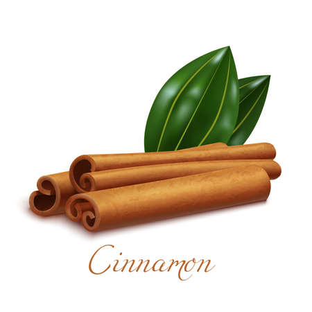 Isolated Cinnamon Sticks and Leaves in Realistic Style Vettoriali