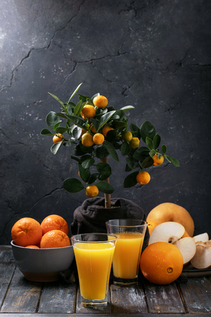 Orange Juice served with oranges, tangerines and korean pear with a mini-oranges tree on the background. Drink Concept