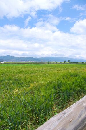 Chinese countryside landscape photo