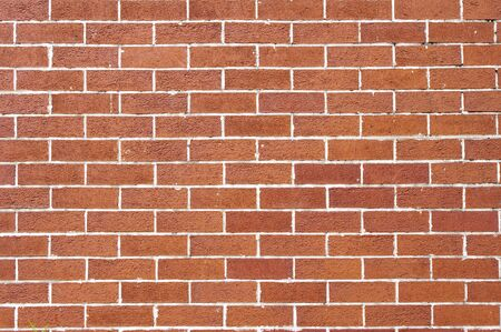 Wall background Stock Photo - 11508763