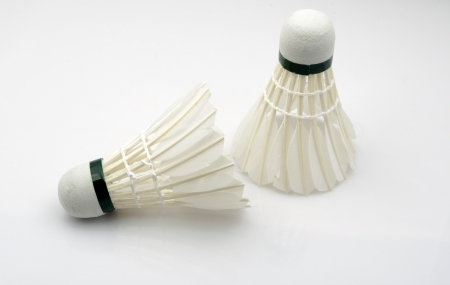 Badminton photo