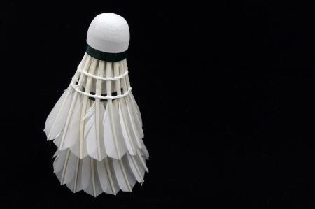 Badminton photo