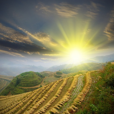 Sunrise terraced photo