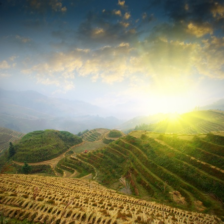 Sunrise terraced Stock Photo - 17473880