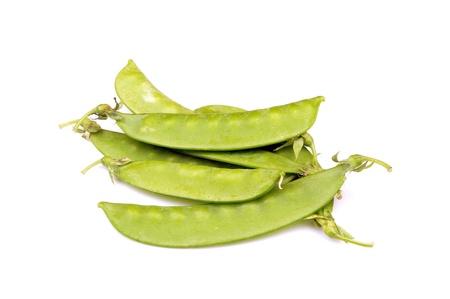 Hyacinth bean 版權商用圖片