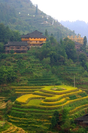 terracing: Guilin rice terraces Stock Photo