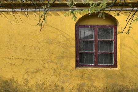 Quiet windows in the temple photo