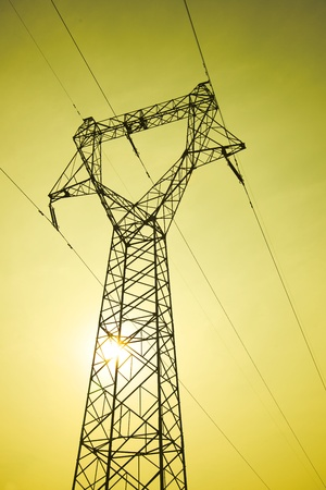 The plant power tower at sunset photo