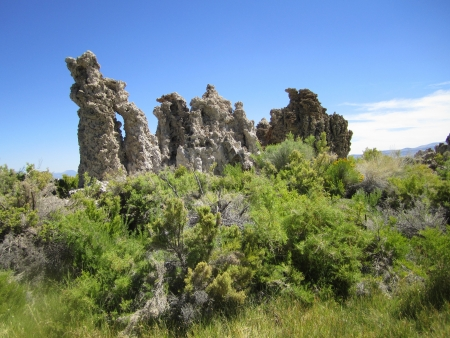 mammoth lakes: Mono Lake, Tufa, Mono Lake Tufa, Mammoth Lakes, California