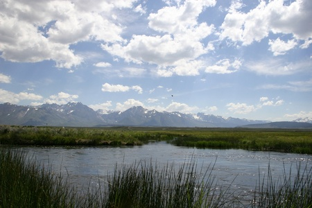 owens valley: Owens River Stock Photo