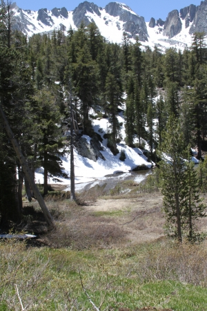Snow Capped Mountains in Trail to Emerald Lake, Mammoth Lakes, California