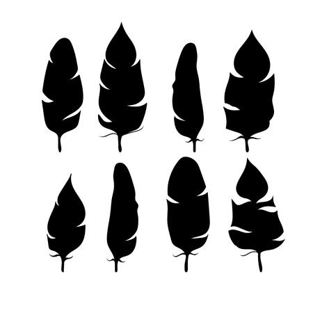 Feathers silhouettes set. Vector EPS 10 Illustration