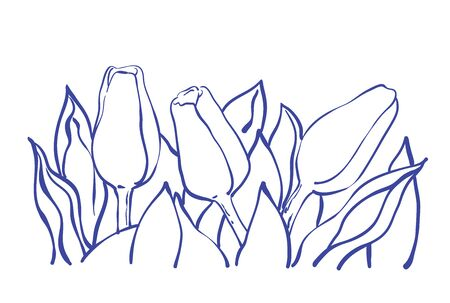 thee: Decorative tulip composition in line art, sketchy style. Thee tulip flowers with leaves.