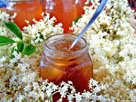 colds: honey beige flowers Stock Photo
