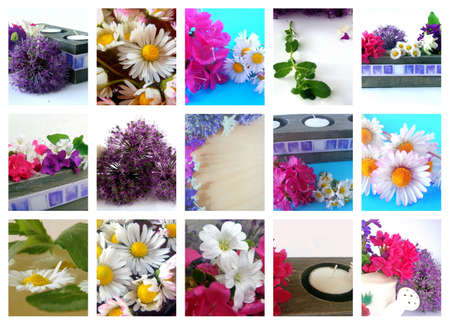 collage flowers photo