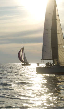 windward: sailboats riding the wind into the sunset