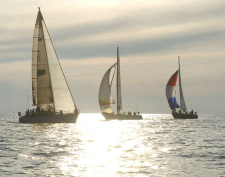 sailboats rounding a mark in a sunset race