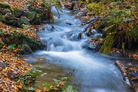モスと石の川
