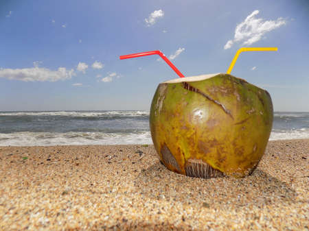 Coconut water on the beach, partially buried in the sand.
